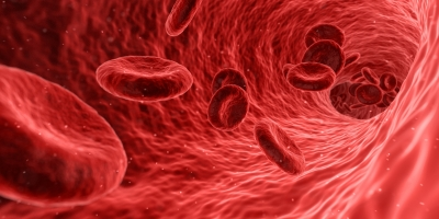 New device to assess side effects of alcohol on blood cells