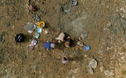 Thousands of 167 million-year-old Jurassic fossils found at secret UK site(Credit: BBC)