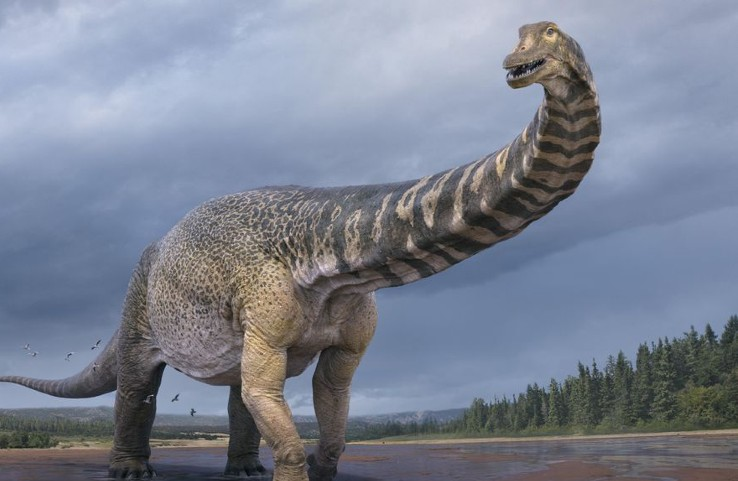 This simulated image shows an Australotitan cooperensis (Pic Courtesy scmp.com)