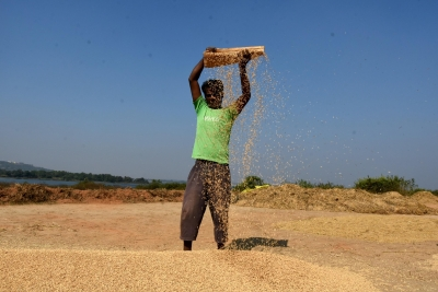 India's Kharif sowing season to start by May-end