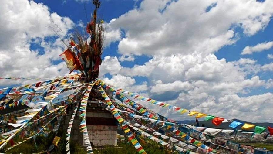 Contributions have been made by Tibetans from all over the world